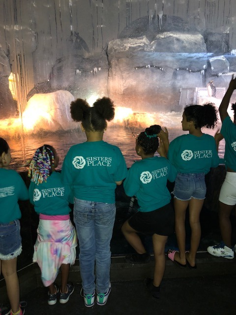 A group of children at the Zoo in Sisters Place logo t-shirts